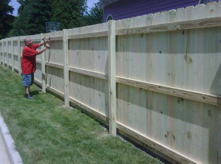 treated fence